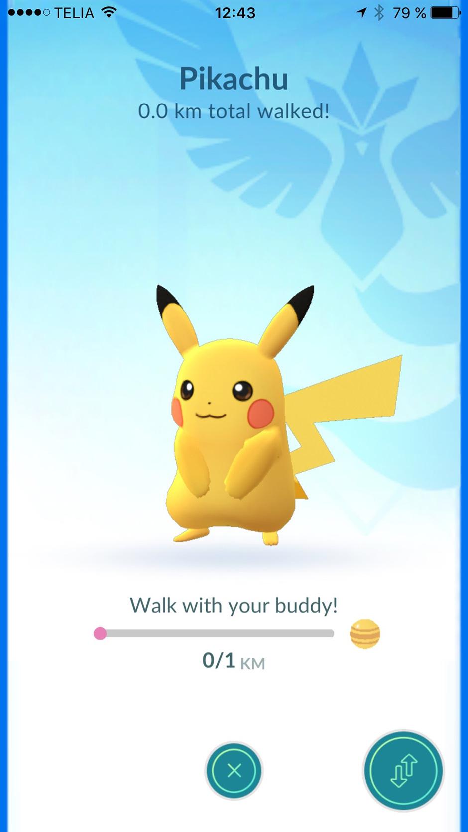 buddy pokemon go